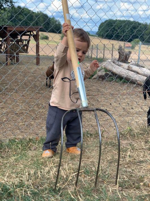 Kleiner Helfer auf dem Ferienhof Sennert