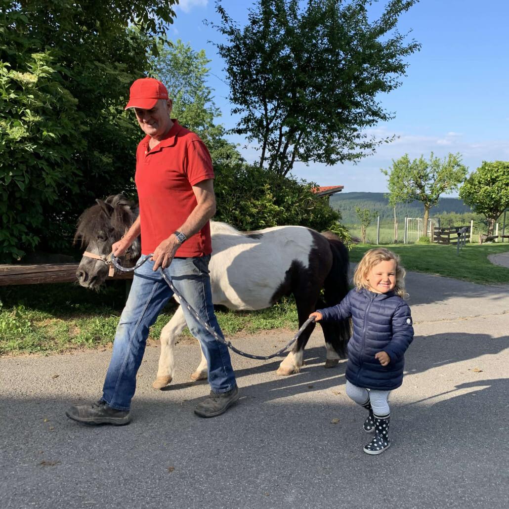 Pony in den Stall bringen