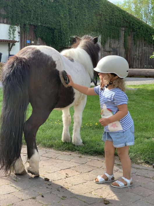 Pony putzen macht Spaß