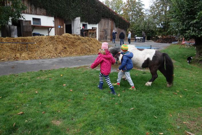 Kinder und Pony