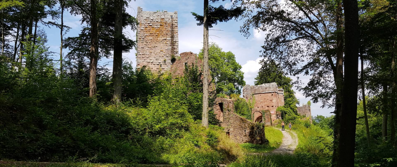 Burgruine Wildenberg